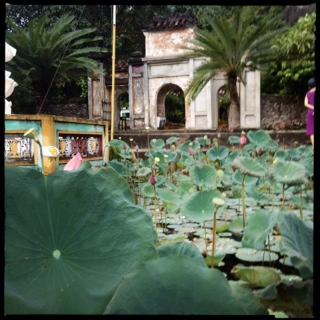 pagoda estanque cham